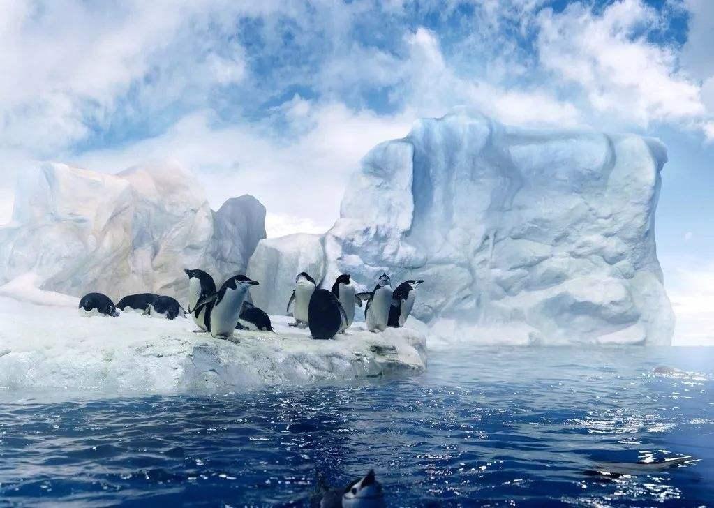 冰川融化.jpg